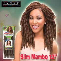 Janet Collection Synthetic Bulk & Braid_Slim Mambo Twist 12""